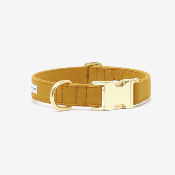 SEE SCOUT SLEEP Standard Collar The Scot Collection – (Mustard)
